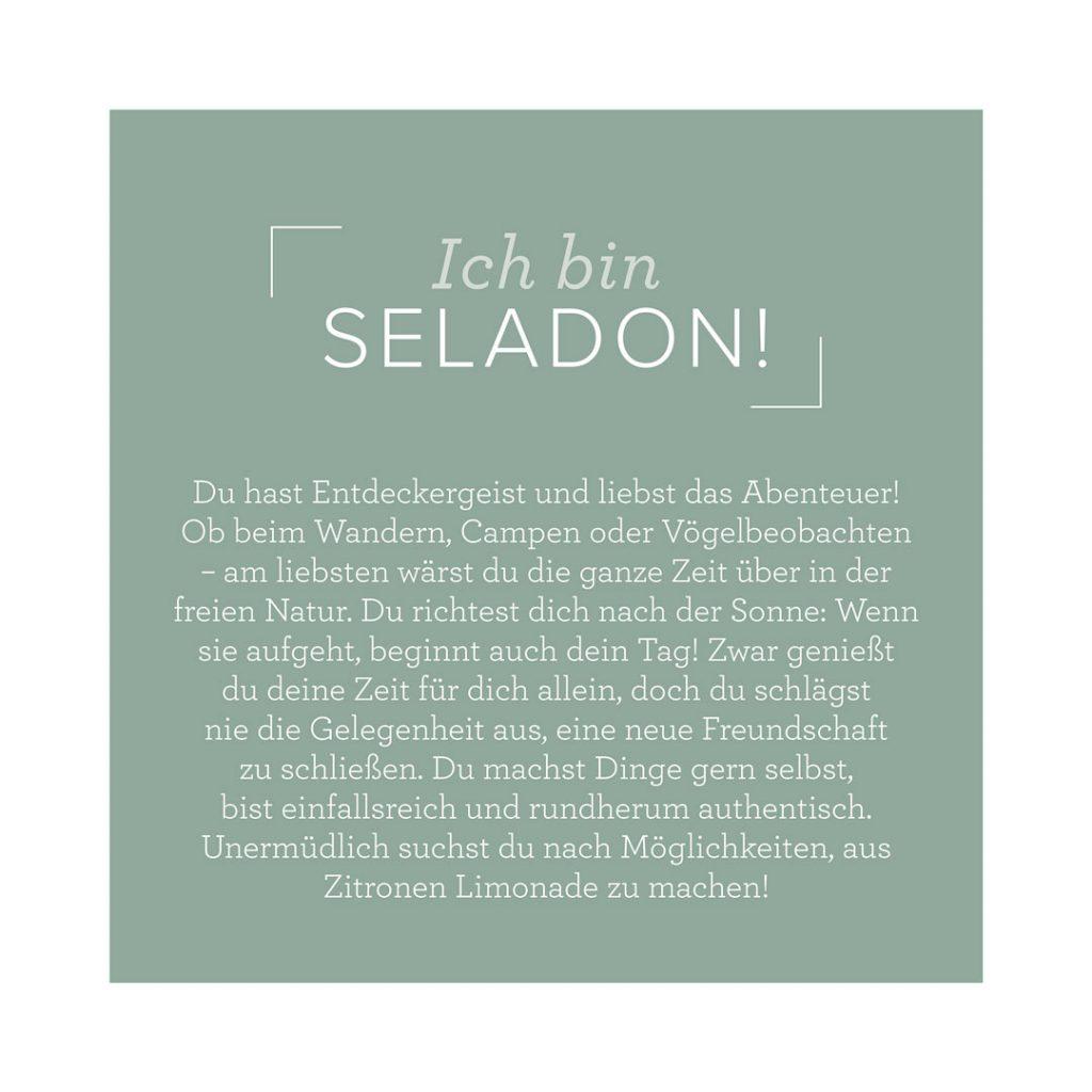 BlogHop, Hop around  the corner neuer Jahreskatalog 2021-2022, Basteln, Friedrichsdorf, neuer Katalog, Stampin' UP!, Seladon, InColor 2021-20222, ich bin Seladon