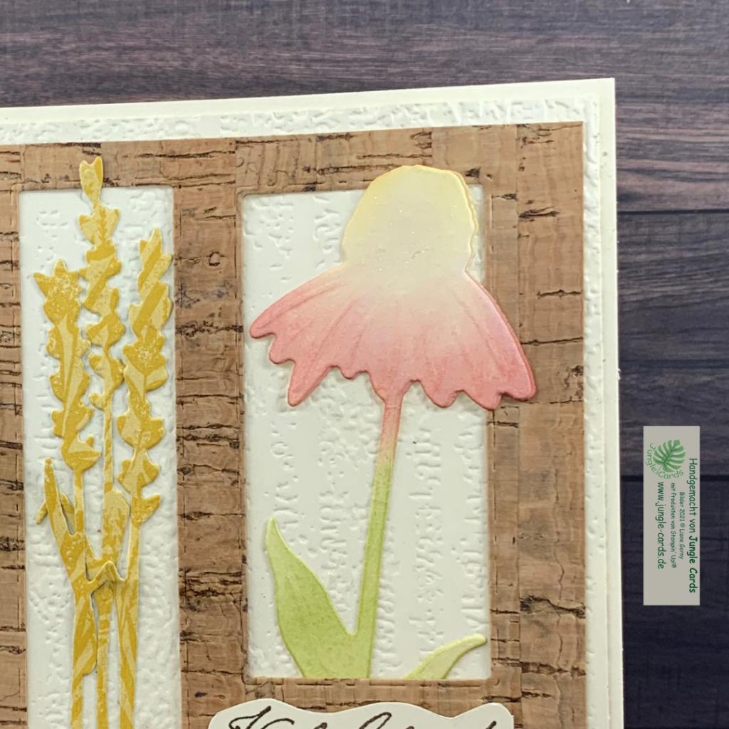 Herbstblumen, Bilderrahmen, Sonnenhut detail